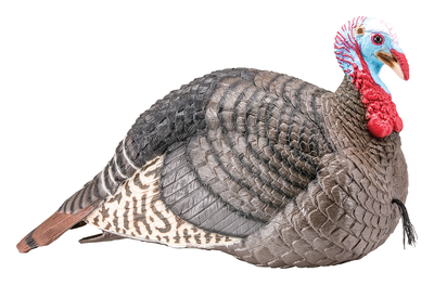 Strut-Lite Jake Turkey Decoy